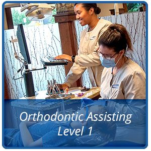 Orthodontic Assisting Level 1 - Trapezio